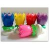 mix grojanti gimtadienio gėlytė