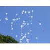 Skrendantys balionai (gali būti su figūrom)